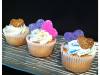 vday-cupcakes-white
